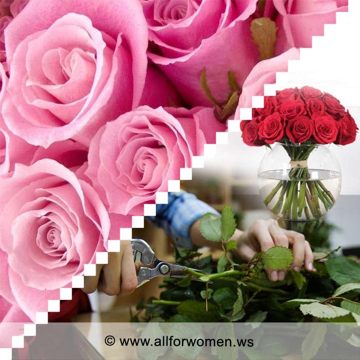 Розы надолго останутся свежими, если использовать наши простые проверенные советы